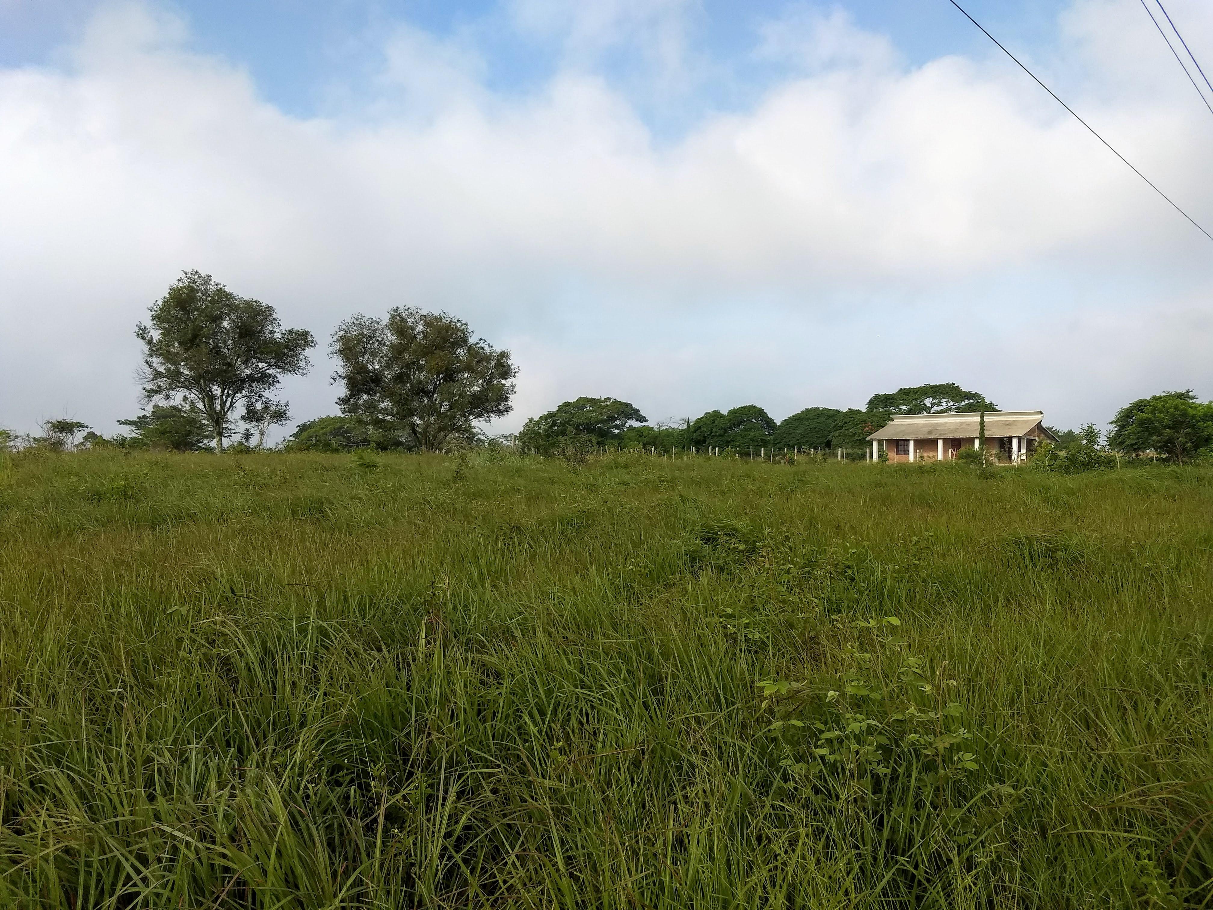Terreno en Venta ubicado en LLANO SAN JUAN