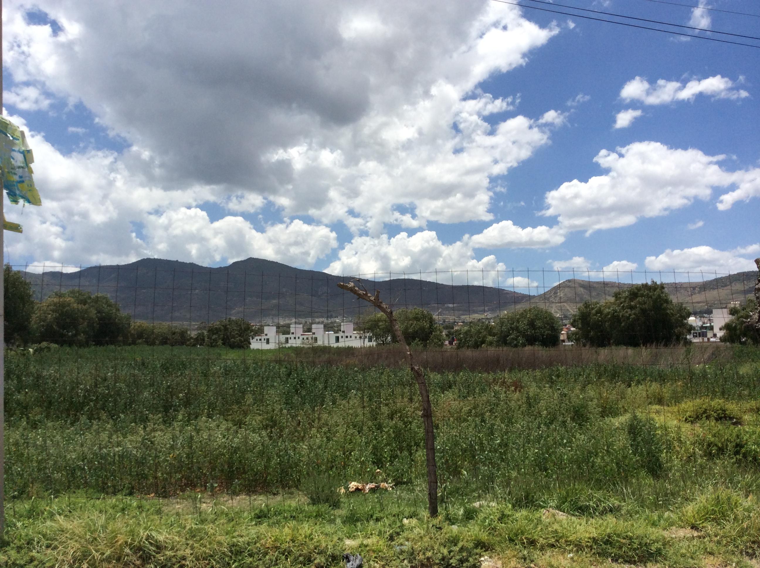 Terreno comercial en venta en Mineral de la Reforma, Hidalgo
