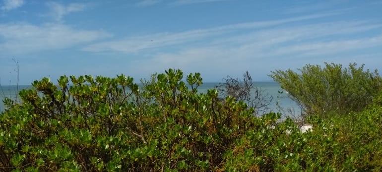 Se vende terreno en Playa Celestún, Real de Salinas