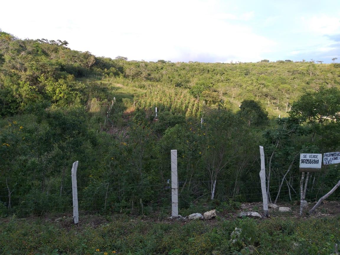 Excelente terreno campestre en venta, Chiapas