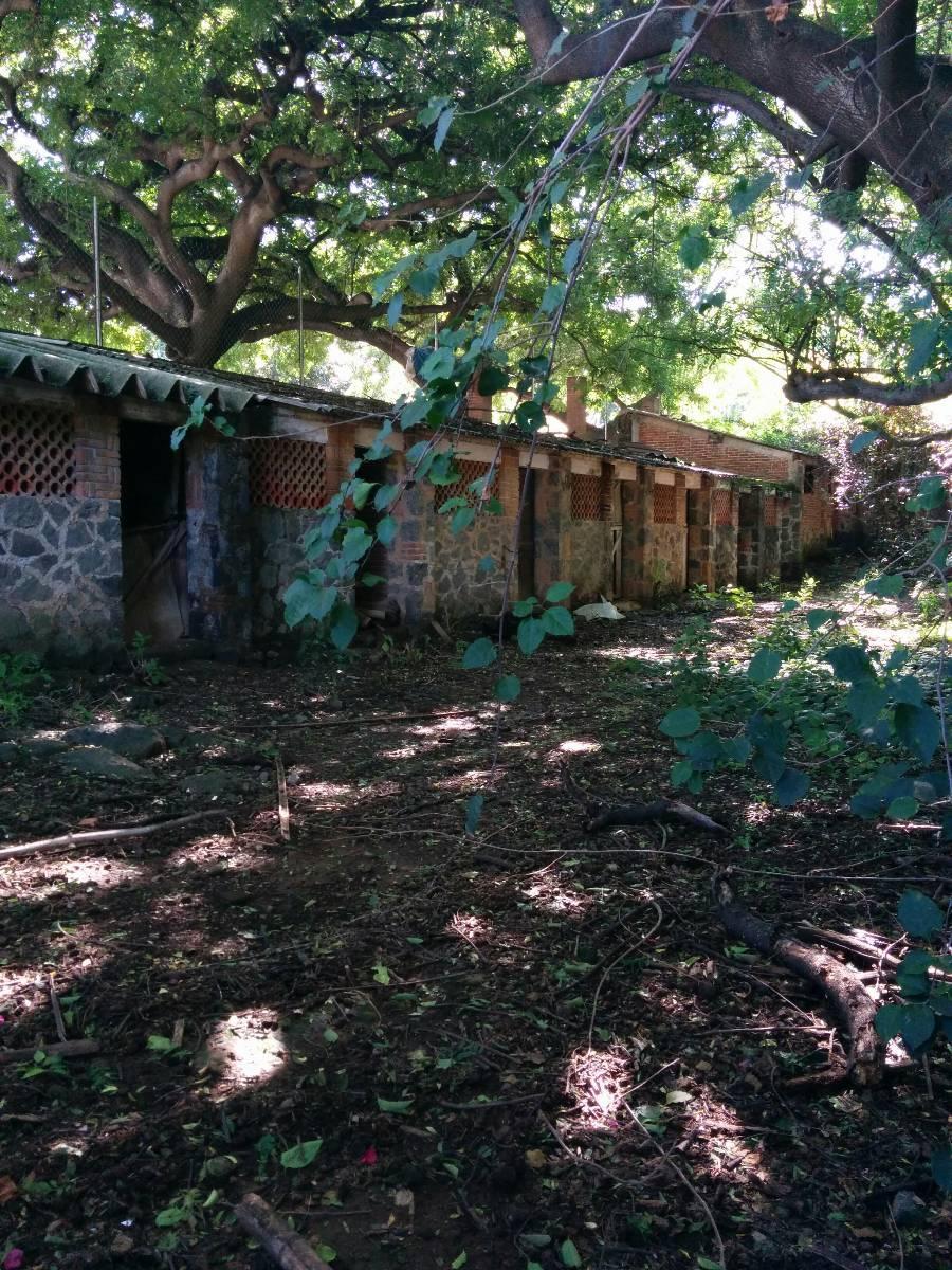 Terreno en Venta, Chamilpa, Cuernavaca, Morelos