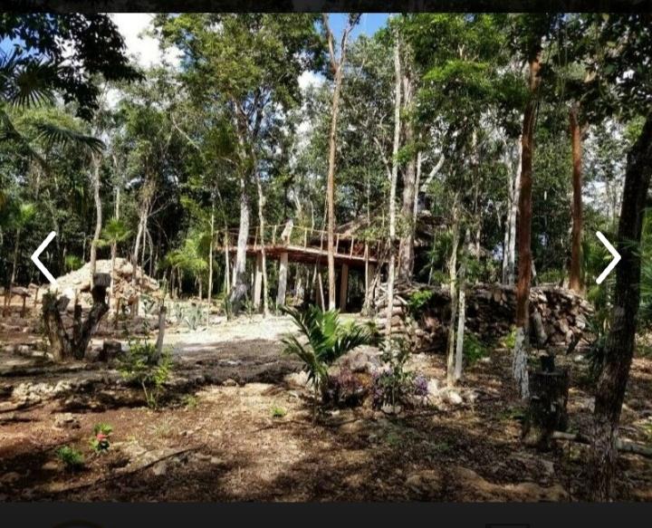 Venta rancho 5 h con cenote Leona vicario