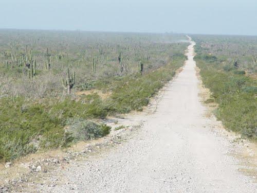 Se vende terreno en Tepentú, Baja California Sur
